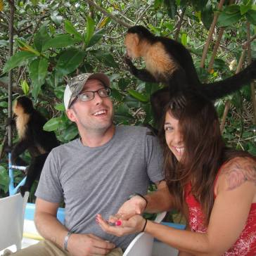 mangrove monkey boat tour, monkeys, bananas, furry little friends